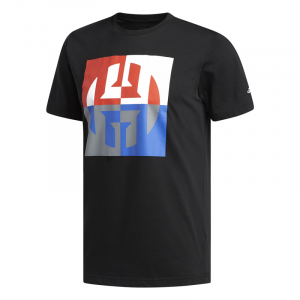 Мужская футболка adidas Big Harden Logo T-Shirt CW9234