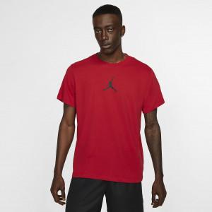 Мужская футболка Jordan Jumpman Men's T-Shirt BQ6740-687