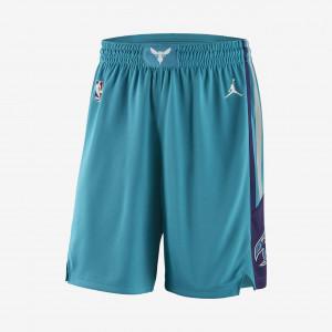 Мужские шорты НБА Charlotte Hornets Jordan Icon Edition Swingman 866785-428
