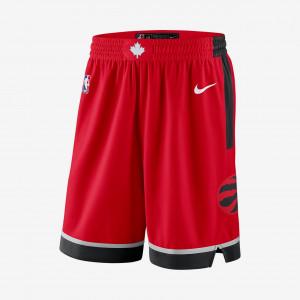 Мужские шорты Nike НБА Toronto Raptors Icon Edition Swingman AJ5653-657