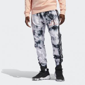 Мужские брюки с ярким принтом adidas Harden FR5634