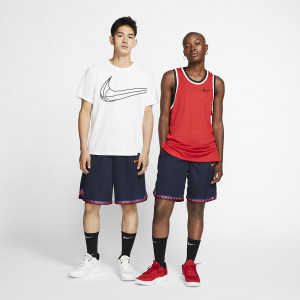 Баскетбольные шорты Nike Dri-FIT DNA AT3150-451