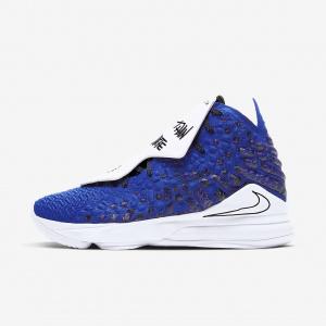 Баскетбольные кроссовки LeBron 17 MTAA