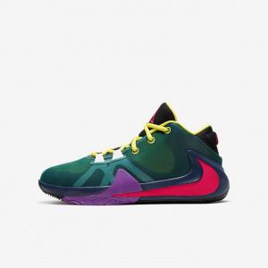 Баскетбольные кроссовки для мальчиков школьного возраста Nike Freak 1 1/2 CU1486-800