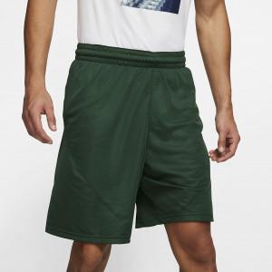 Мужские баскетбольные шорты Nike 23 см 910704-375