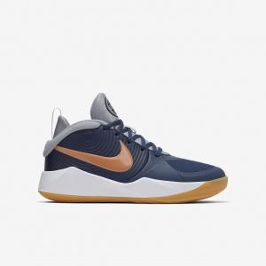 Детские баскетбольные кроссовки Nike Team Hustle D 9 AQ4224-402