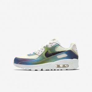 Кроссовки для школьников Nike Air Max 90 CT9631-100
