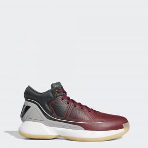 Мужские баскетбольные кроссовки adidas Rose 10 G26161
