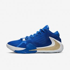 Мужские баскетбольные кроссовки Nike Zoom Freak 1 BQ5422-400