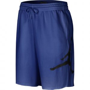Мужские флисовые шорты Jordan Jumpman Logo AQ3115-480