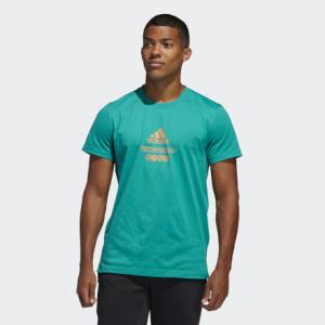Мужская футболка adidas Worldwide Hoops FM4991