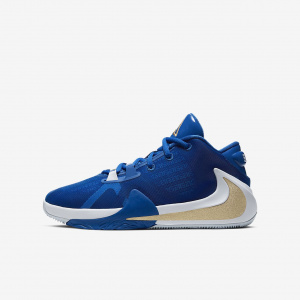 Детские баскетбольные кроссовки Nike Freak 1 BQ5633-400