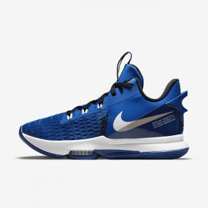 Баскетбольные кроссовки LeBron Witness 5 - Синий