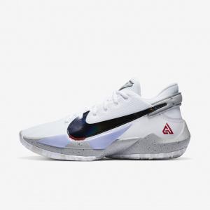 """Баскетбольные кроссовки Nike Zoom Freak 2 """"Cement"""""""