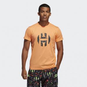 Мужская футболка adidas Harden Logo FM4788