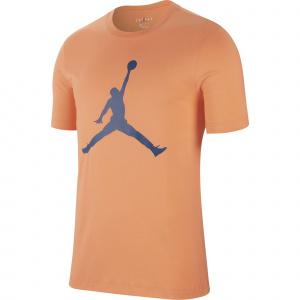 Мужская футболка Jordan Jumpman CJ0921-854