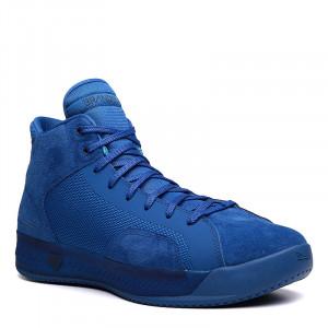 Мужские баскетбольные кроссовки Brandblack Ether 233BB-blue