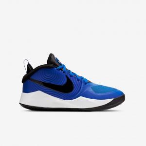 Детские баскетбольные кроссовки Nike Team Hustle D 9 AQ4224-400