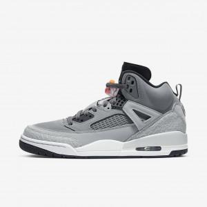 Мужские баскетбольные кроссовки Jordan Spizike 315371-008
