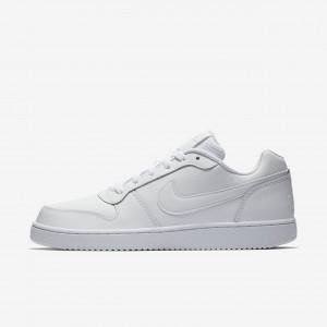 Мужские кроссовки Nike Ebernon Low AQ1775-100