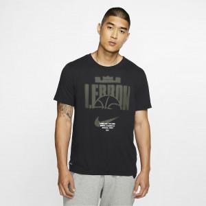 Мужская баскетбольная футболка Nike Dri-FIT LeBron CD0969-010