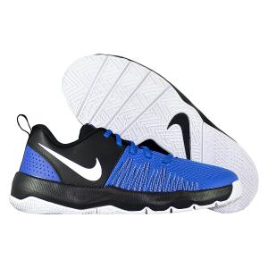 Детские баскетбольные кроссовки Nike Team Hustle Quick 922680-400