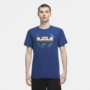 Мужская баскетбольная футболка Nike Dri-FIT LeBron Logo