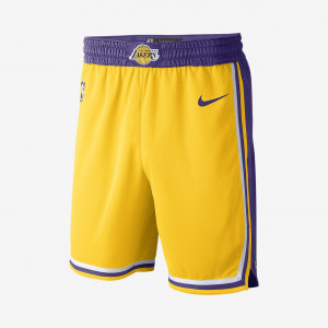 Мужские шорты Nike НБА Los Angeles Lakers Nike Icon Edition Swingman AJ5617-728