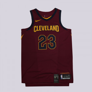 Мужская джерси Nike Lebron James Icon Edition Authentic Jersey 863018-677
