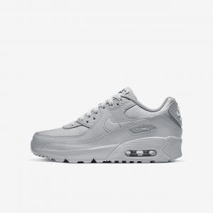 Кроссовки для школьников Nike Air Max 90 LTR - Серый