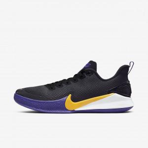 Мужские баскетбольные кроссовки Nike Mamba Focus AJ5899-005