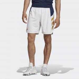 Мужские шорты для баскетбола adidas Россия Performance FJ9478
