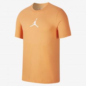Мужская футболка Jordan Jumpman Men's T-Shirt BQ6740-854