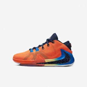 Детские баскетбольные кроссовки Nike Freak 1 BQ5633-800