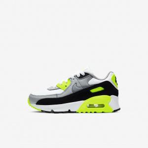 Кроссовки для дошкольников Nike Air Max 90 CD6867-101