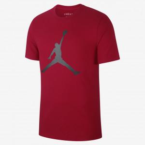 Футболка Air Jordan Jumpman Tee