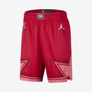 Мужские шорты Jordan НБА Swingman All-Star CJ1068-657