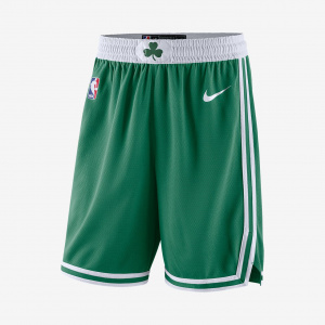 Мужские шорты Nike НБА Boston Celtics Icon Edition Swingman AJ5587-312
