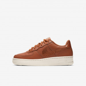 Детские кроссовки Nike Air Force 1 Premium Embroidered AV0750-200