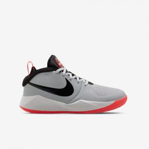 Детские баскетбольные кроссовки Nike Team Hustle D 9 AQ4224-007