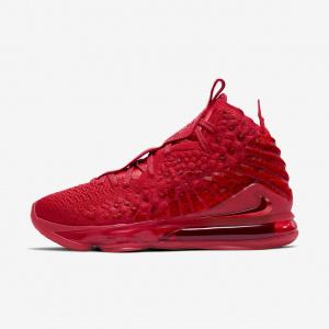 Мужские баскетбольные кроссовки Nike LeBron 17 BQ3177-600