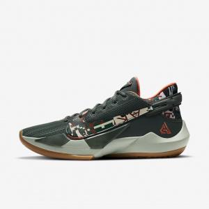 Баскетбольные кроссовки Zoom Freak 2 - Зеленый