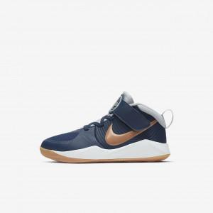 Детские баскетбольные кроссовки Nike Team Hustle D 9 Strap AQ4225-402