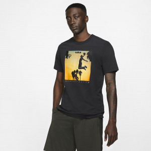 Мужская футболка Nike Dri-FIT LeBron Fly BV8317-010