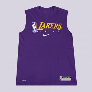 Мужская майка Nike Los Angeles Lakers AT0628-547