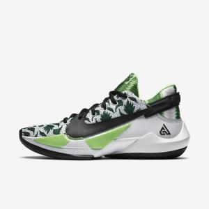Баскетбольные кроссовки Zoom Freak 2 Naija