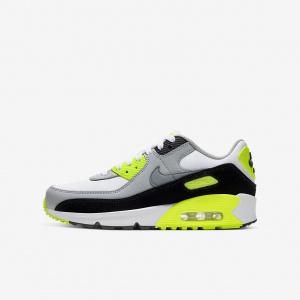 Кроссовки для школьников Nike Air Max 90 LTR CD6864-101