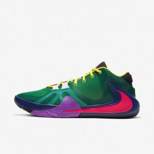 Мужские баскетбольные кроссовки Nike Zoom Freak 1 Multi CT8476-800
