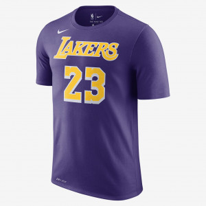 Мужская футболка НБА LeBron James Los Angeles Lakers Nike Dri-FIT BQ1540-557