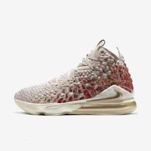 Мужские баскетбольные кроссовки Nike LeBron 17 CT3466-001